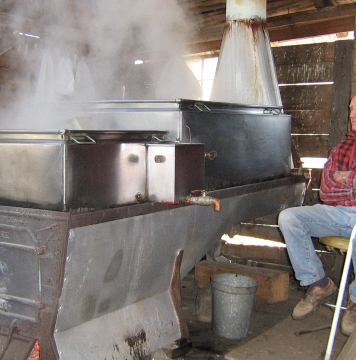 Howard Hatch boiling sap