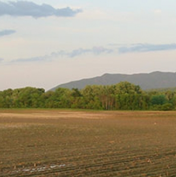 Conserved Boissoneault farmland in Fairfax